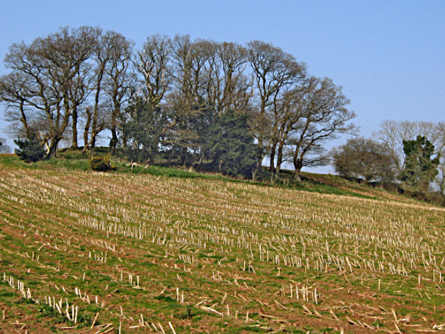 Field and hilltop above Kingston St Mary