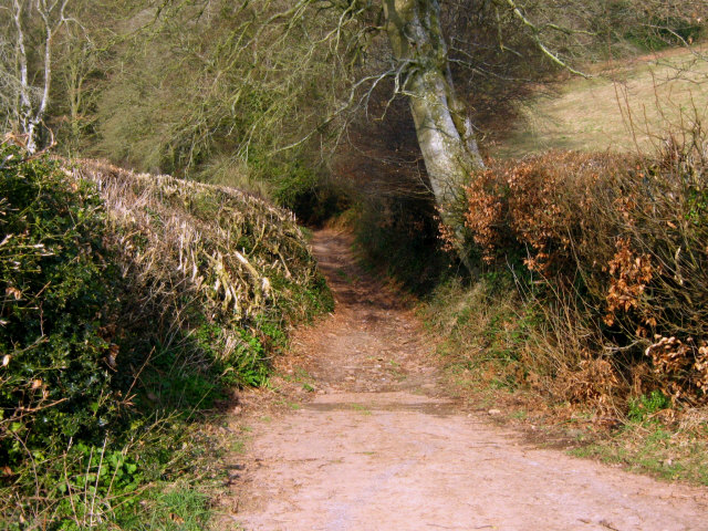 Bridleway from Kingston Cross towards Broomfield