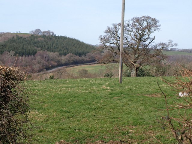 Field near Chudleigh