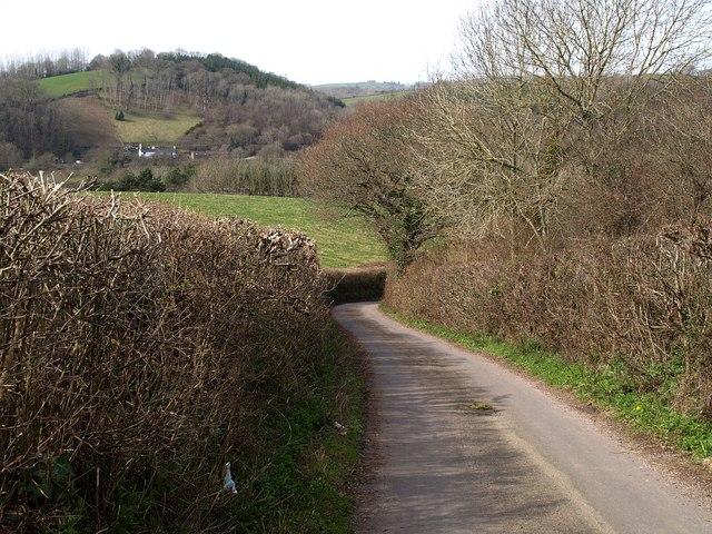 Lane near Chudleigh