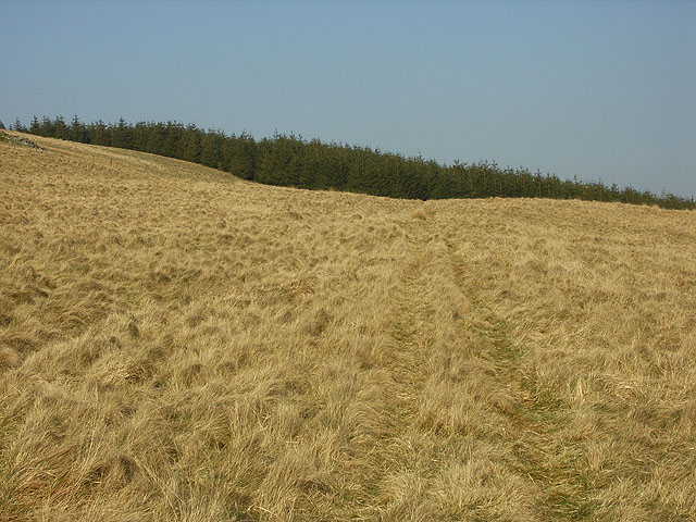 Bridleway heading over Cistfaen