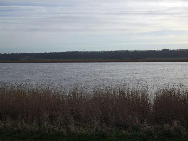 River Trent towards Flixborough flats