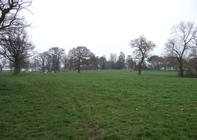 Former parkland,Highfields