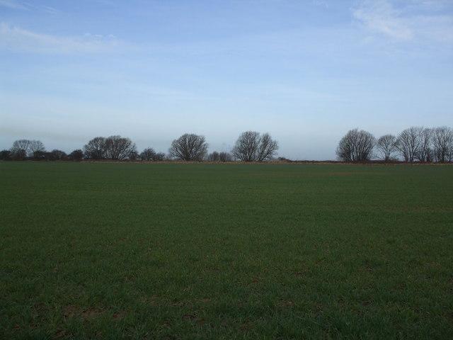 Fields toward the disused  Axholme Light Railway line