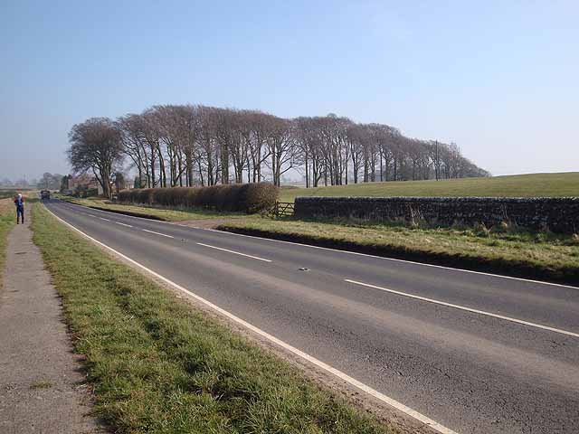Military Road at Halton Shields