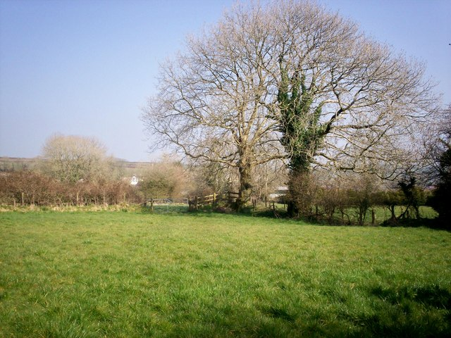 Field east of Village Hall, Llanteg