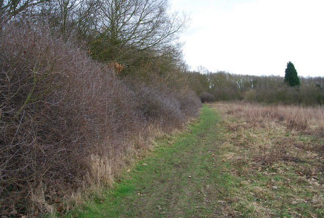 Footpath off the A290 behind Red Lion House