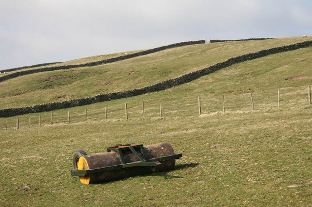 Roller in pasture