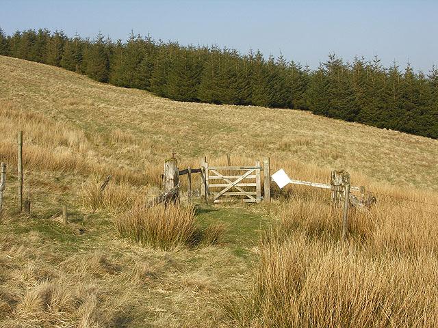 Gate on bridleway by Cistfaen