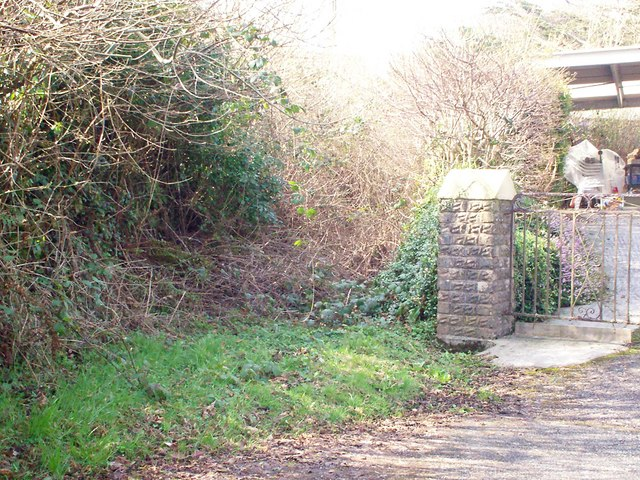 Overgrown Right of Way, Llanteg