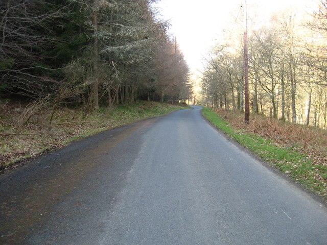 The Tweedside road between Elibank and Walkerburn