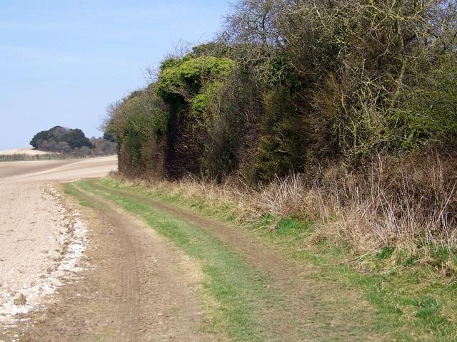 Track near Bowldish Pond