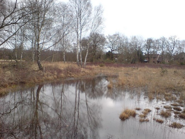 Pond, Ancells Farm Nature Reserve