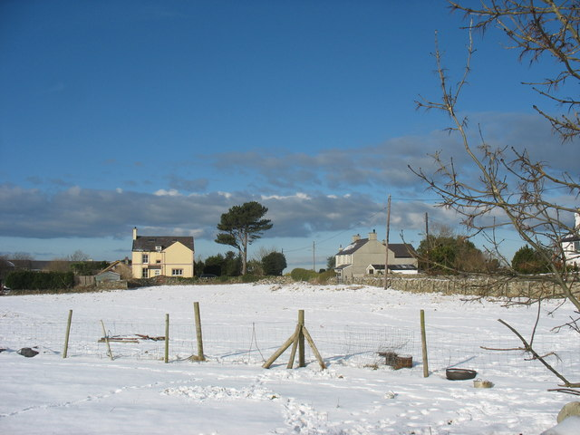 Field and houses along Lon Groes on a snowy day