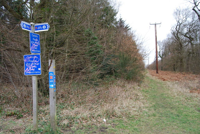 Signpost for National Cycleway 1, Clowes Wood