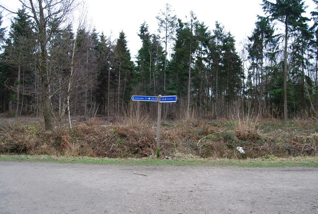 Signpost for National Cycleway 1, Clowes Wood (2)