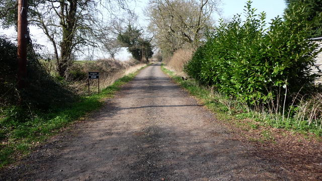 Driveway to Withy Furlong Farm.