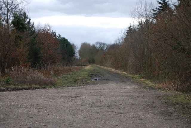 Dismantled Railway, Clowes Wood