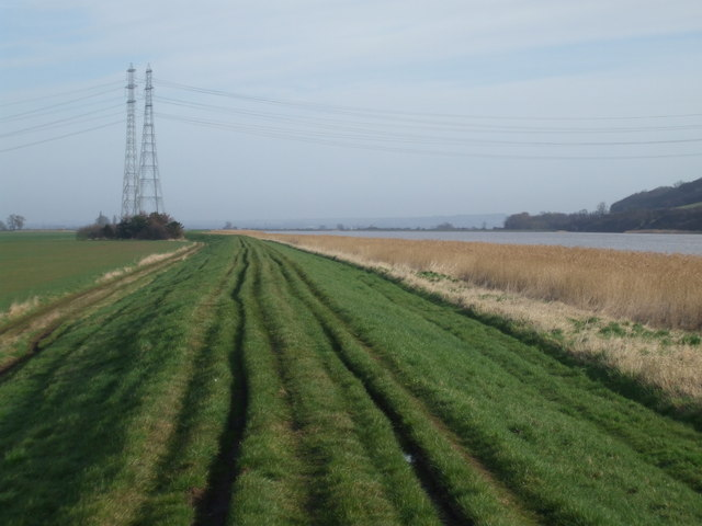 Trent bank towards Island Farm