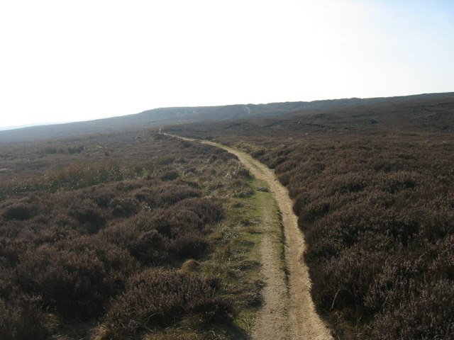 Bridleway on Edmondbyers Common