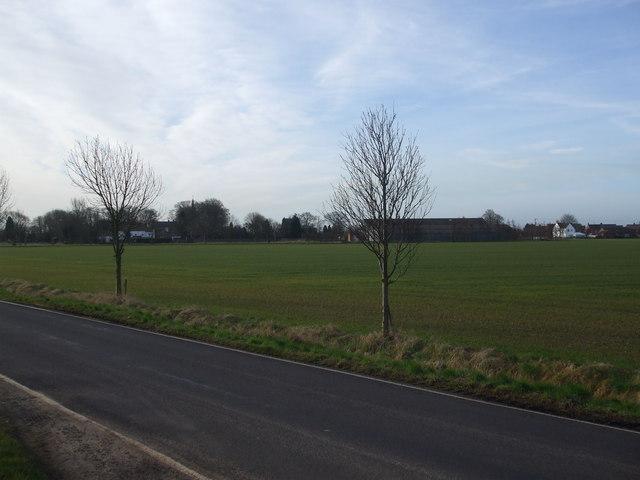Towards Amcotts village