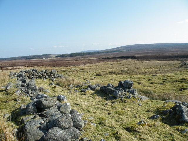 Ruins near Dunearn Lodge