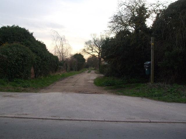 Firth Lane