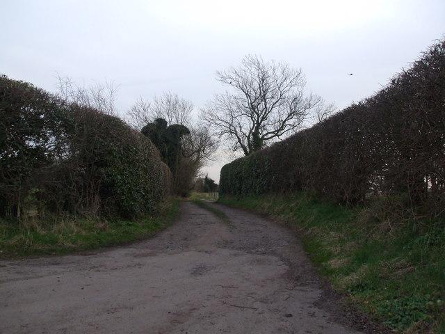 Track to Skyers Farm