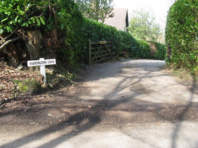 Entrance to Farringtons Copse