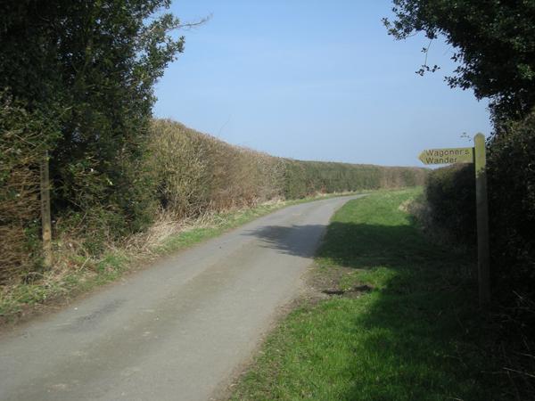 Lane & signpost