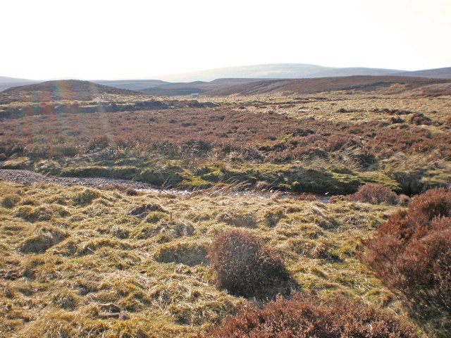 Sheepfold and Hut across Leonach Burn