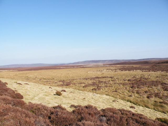 Looking East over moorland near Leonach