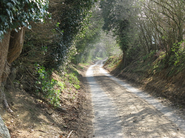 Country road from Harwoods Green to Stopham