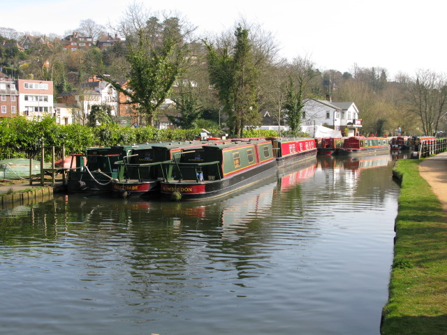 Narrow boats moored on the River Wey