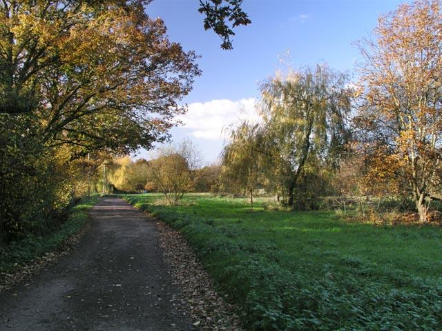 Mizbrooks Green