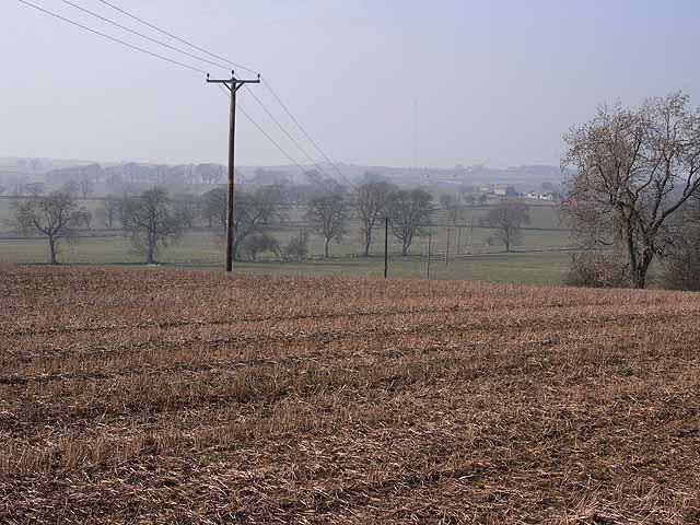 Field south of Great Whittington