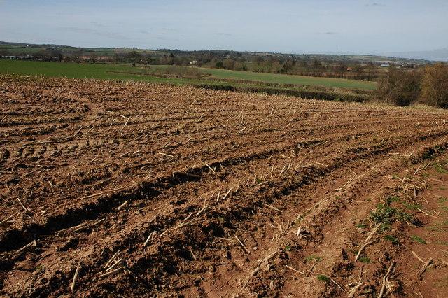 Arable land at Kempley