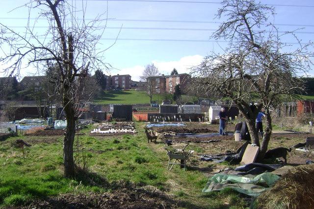 Potterton's allotments, Warwick