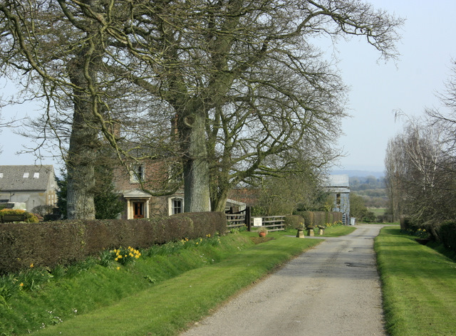 2009 : Lane to Spiers Piece Farm