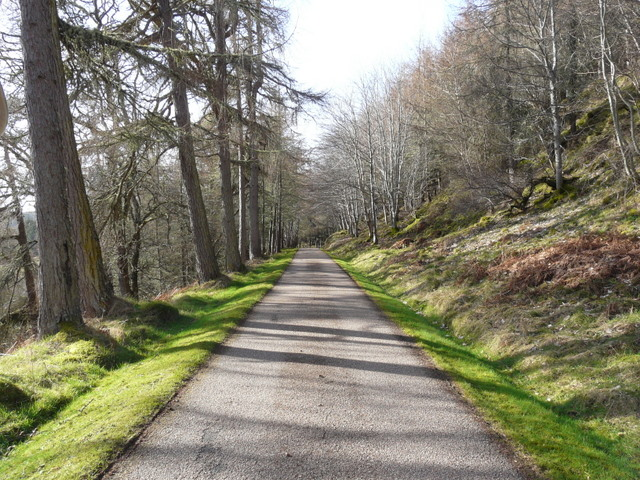 Driveway to Langwell House
