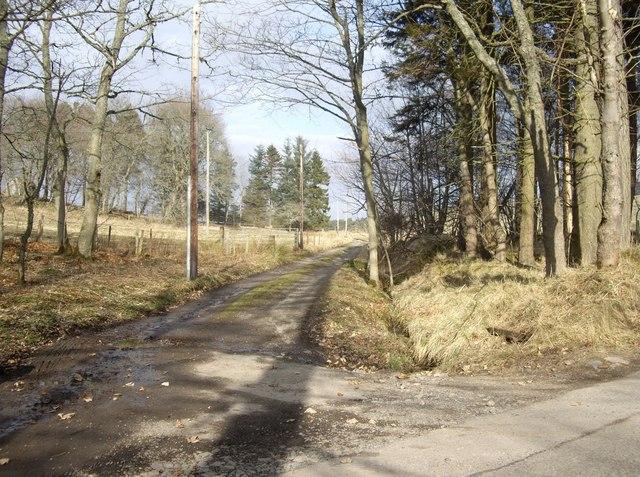 Lane to Waterside of Blairmore