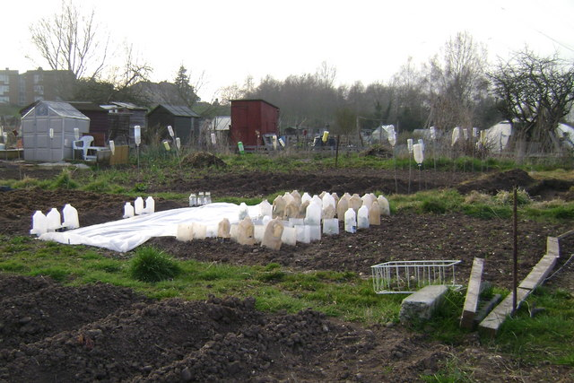Recycling, Potterton's allotments, Warwick