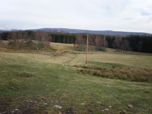 Power Lines crossing Pasture Land at Marchstripe