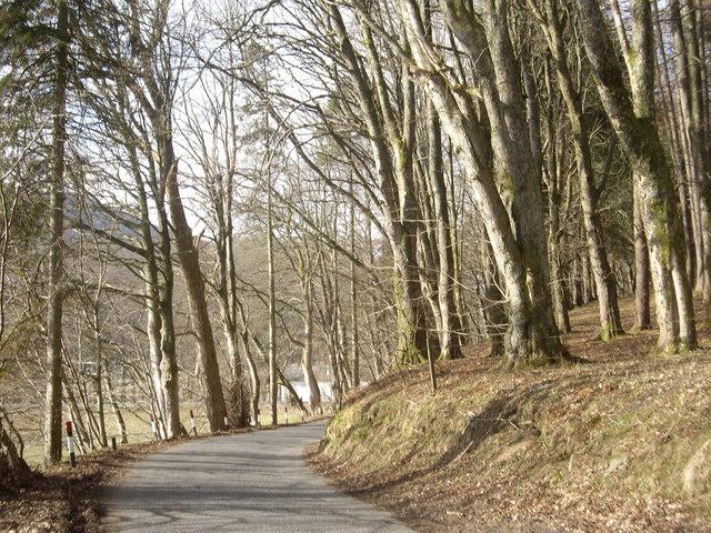 A minor road