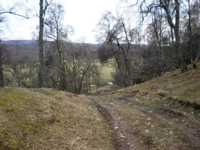 Track going down to Pasture land above River Findhorn
