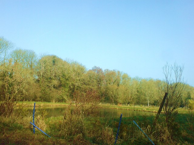 Ponds at Shoals Hook Lane