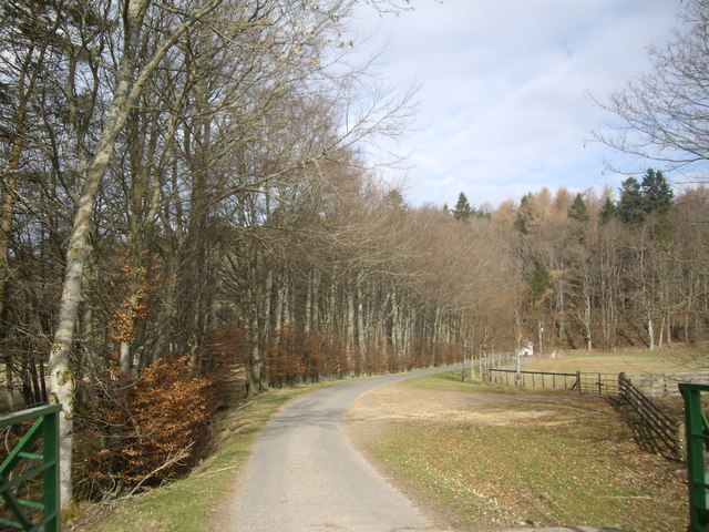Road from Aswanley to Blairmore