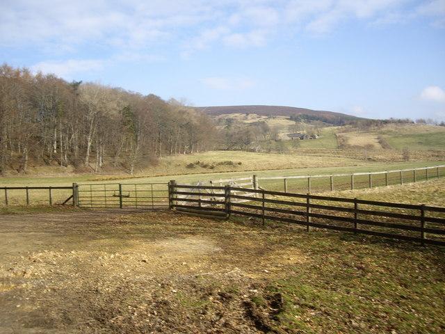 View NNE towards Boghead