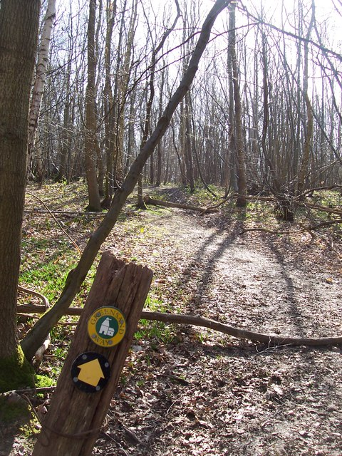 Greensand Way marker in Moat Wood