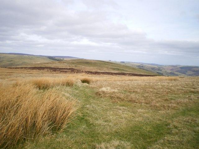 Maengwyn from the south